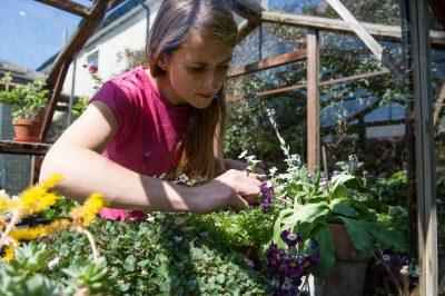 Katie Rushworth of ITVs Love Your Garden on growing herbs in your garden