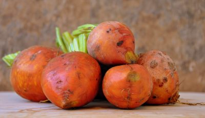 Golden beets, a versatile and hardy early sowing vegetable