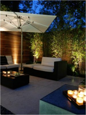 Uplighting plants adds drama and interest to your night time garden