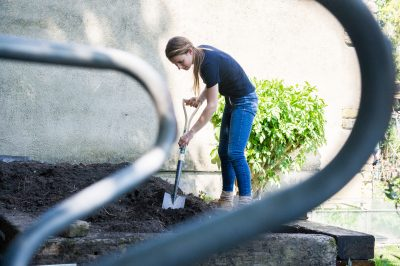 Laying a lawn from turf by Katie Rushworth