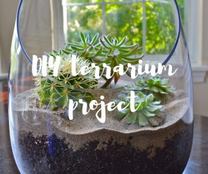 DIY terrarium project - a home and garden tutorial from Katie Rushworth