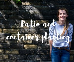 Patio and container planting, a gardening blog from ITV's Katie Rushworth