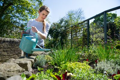 Saving water in your garden. A blog from ITVs Katie Rushworth