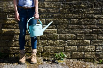Watering the garden with a watering can