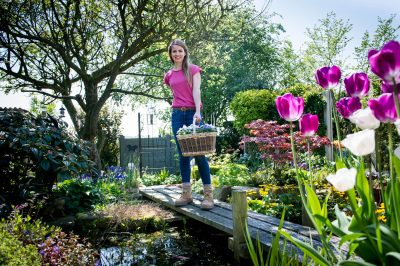 Preparing your garden for going away on holiday: an article by Katie Rushworth