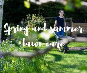 Spring and summer lawn care, an article from TV gardener Katie Rushworth
