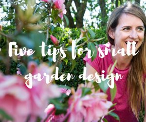 Five tips for small garden design, a gardening blog from TV gardener Katie Rushworth